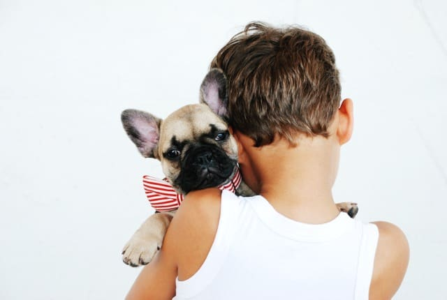 Boy and Puppy on White Background | Blue Horizon Counselling